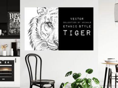 Hand draw tiger portrait. Hand draw vector illustration