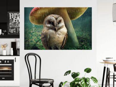 Little owl under mushroom