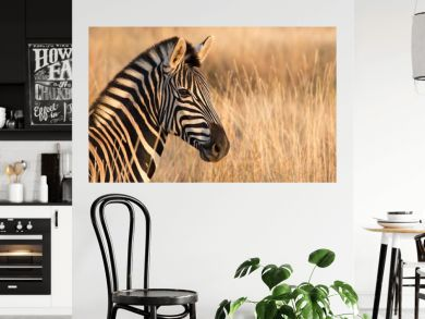 Zebra left Portrait