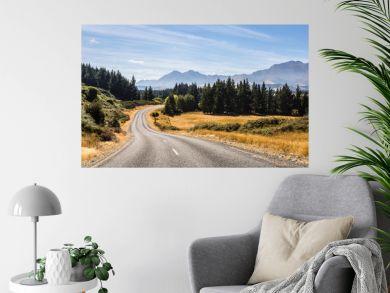 On the road in New Zealand south island near lake Monowai