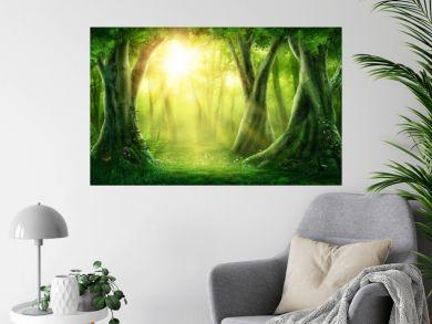 Dark magic forest