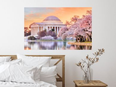 Jefferson Memorial during the Cherry Blossom Festival