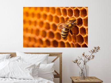 Bee on honeycomb.
