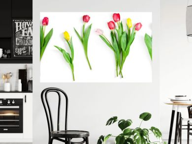 tulip flowers set isolated on white with clipping path included