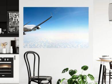 Passenger airplane flying