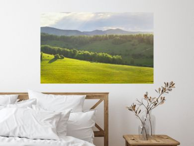 Panoramic mountain views, green hills and meadows. Morning light, fog.
