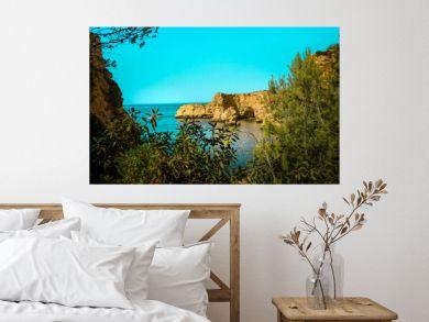 Semi hidden view through the vegetation of Marinha beach in Portugal