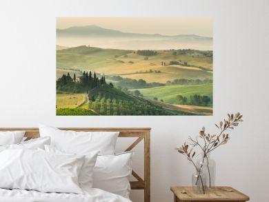summer landscape of Tuscany, Italy.
