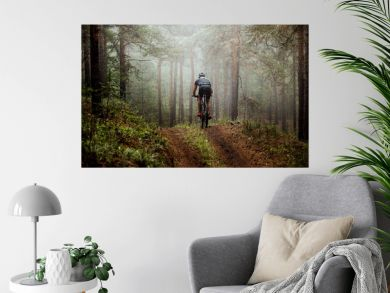 male athlete mountainbiker rides a bicycle along a forest trail. in forest mist, mysterious view