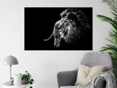 Löwe in schwarz und weiß