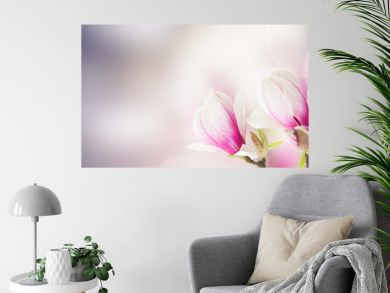 Fresh pink magnolia tree flowers against bokeh background banner