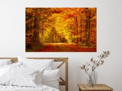 Beautiful sunny autumn landscape with fallen dry red leaves, road through the forest and yellow trees