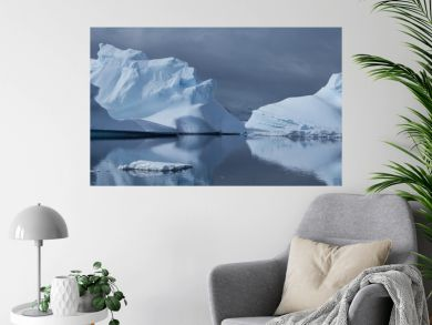 Reflected Iceburges