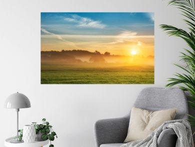 Beautiful summer sunrise over fields
