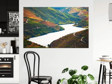 Douro river valley with vineyards in Portugal. Portuguese wine region. Beautiful autumn landscape
