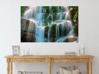 Forest waterfall Shipot. Ukraine, Carpathian mountains.