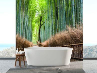 Japanischer Bambuswald in Arashiyama, Kyoto, Japan