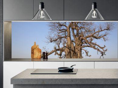 Baobab géant en Inde