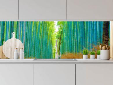 Beautiful Bamboo forest in Arashiyama at Kyoto