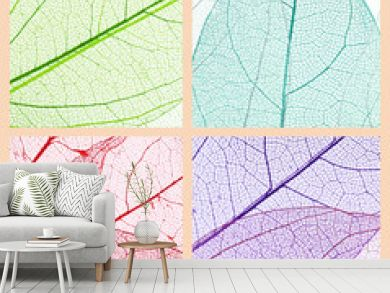 Collage of decorative skeleton leaves.