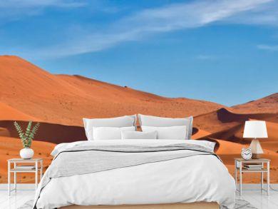 Panoramic of Sossus Dunes, Namibia