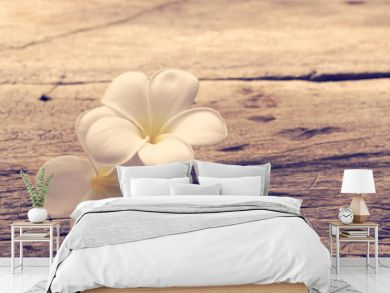 Beautiful plumeria or temple,spa flower on rustic wood background