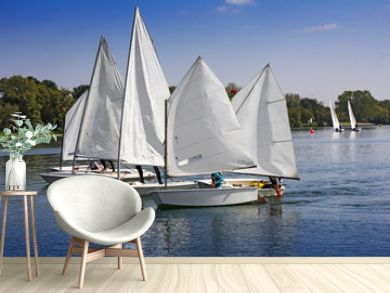 Sports sailing in Lots of Small white boats on the lake