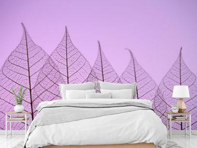 Skeleton leaves on purple background, close up