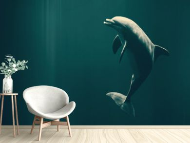 Happy swimming dolphin