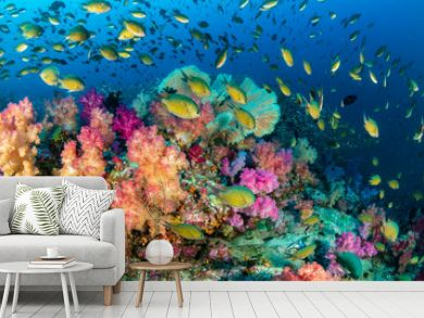 Colorful tropical fish swim around a healthy, thriving coral reef