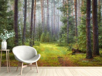 Nature green forest landscape