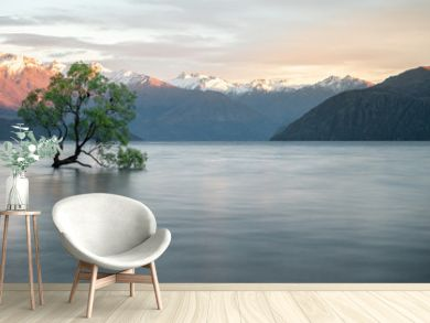 Willow tree growing in the middle of lake with mountains backdrop. Shot of famous Wanaka Tree from New Zealand made during sunrise.