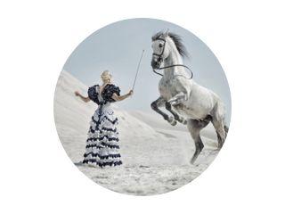Aantrekkelijke blonde die het paard traint