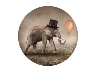 Olifant met een ballon