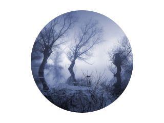 Griezelig landschap met mistig donker moeras in de herfst.