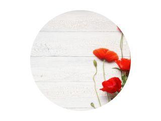Rode papaver bloemen op wit rustiek houten oppervlak.