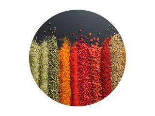 Kleurrijke collectie specerijen en kruiden op achtergrond zwarte tafel. Mediterrane specerijen voor het decoreren van verpakkingen met voedsel.