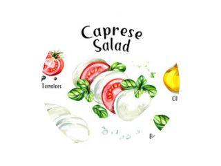 Caprese salade ingrediënten Recept. Aquarel hand getekende illustratie geïsoleerd op een witte achtergrond