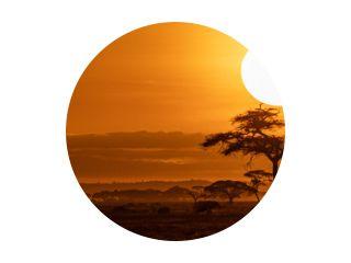 Oranje zonsondergang Safari voertuig horizontale webbanner