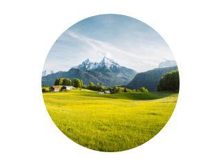 Idyllisch berglandschap in de Alpen met bloeiende weiden in de lente