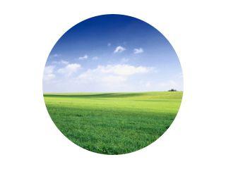 rusland zomerlandschap - groene velden, de blauwe lucht en witte c