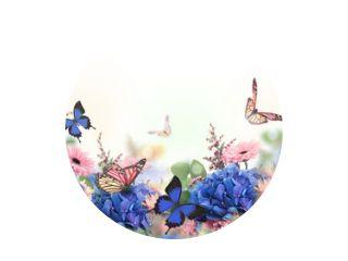 Geweldige achtergrond met hortensia& 39 s en madeliefjes. Gele en blauwe bloemen op een witte blanco. Bloemenkaart aard. bokeh vlinders.