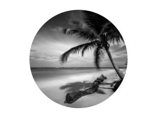Punta Cana (zwart-wit)