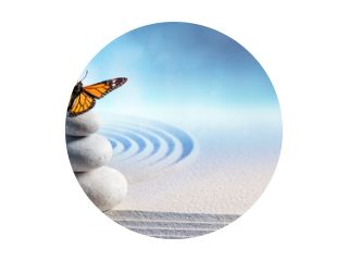 Butterfly On Spa Massage Stenen In Zen Garden