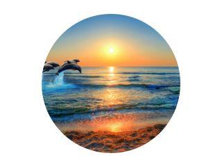 Dolfijnen springen in de blauwe zee van Thailand bij zonsondergang