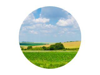 panorama prachtig uitzicht landschap veld