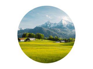 Idyllisch landschap in de Alpen met bloeiende weiden in de lente