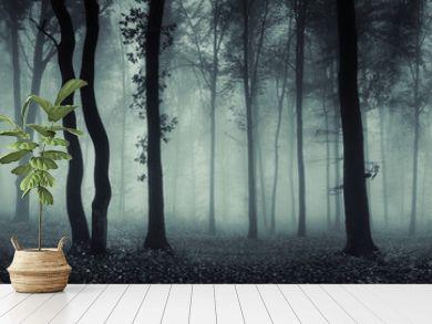 dark forest panorama fantasy landscape
