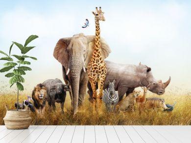 Safari Animals in Africa Composite