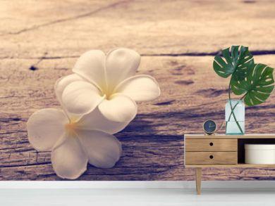 Beautiful plumeria or temple,spa flower on rustic wood background